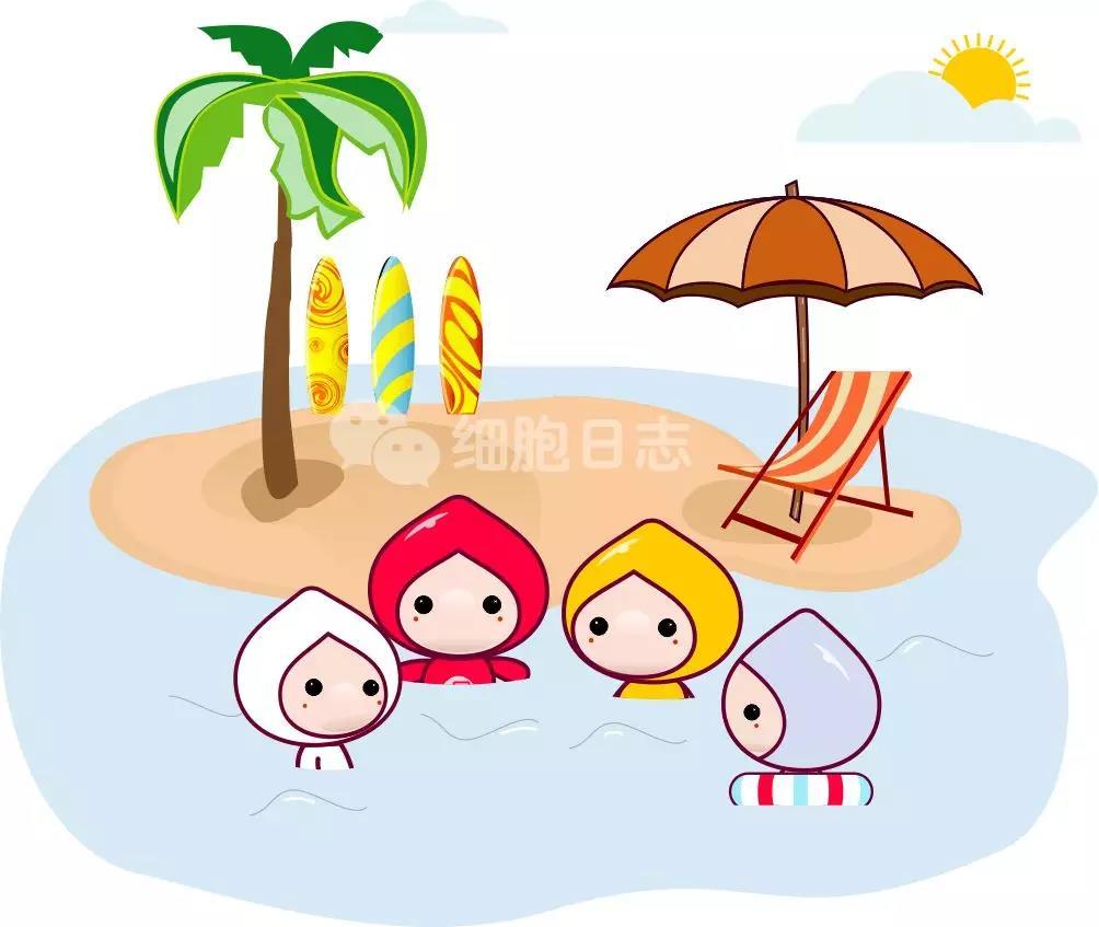 夏天到来,除了防晒还要防TA···