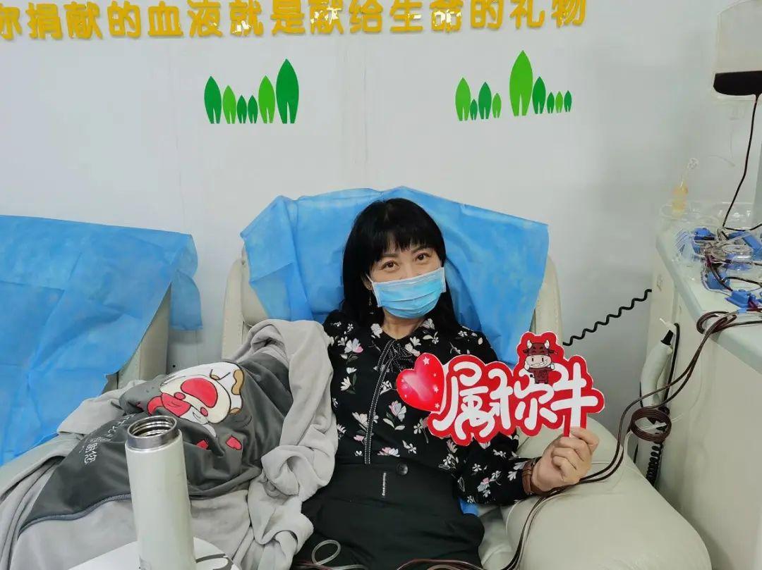 别人过年包红包,他们过年包献血