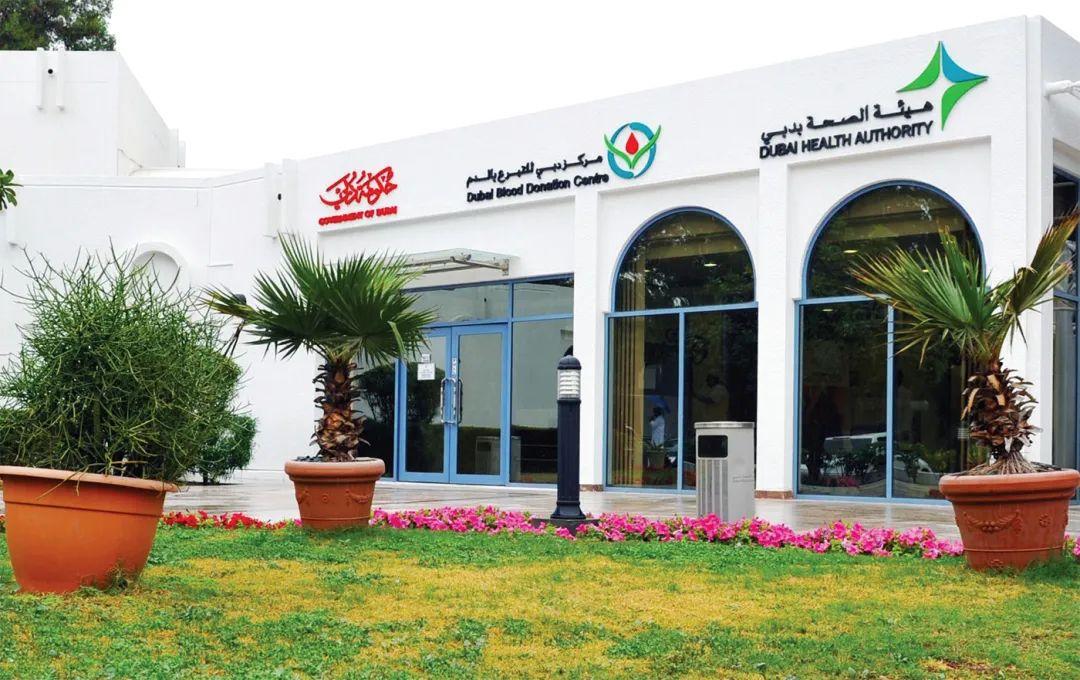 在土豪城迪拜献血是什么感觉?