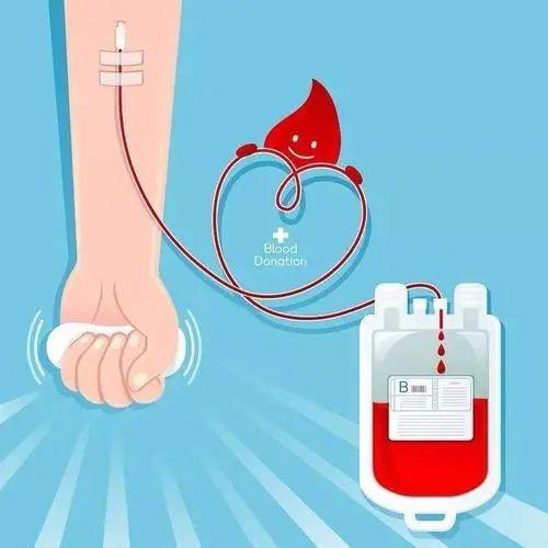 宝,你今天献血了吗?